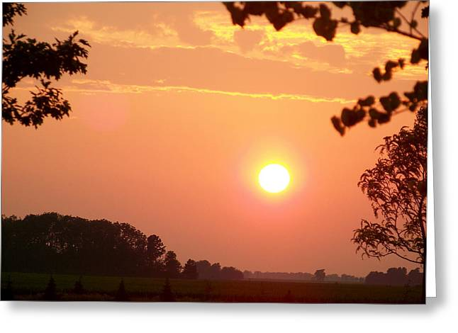Greeting Card featuring the photograph The Setting Sun by Robin Regan