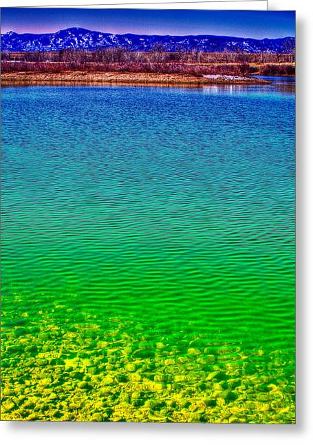 The Shallow End Of Eaglewatch Lake Greeting Card by David Patterson