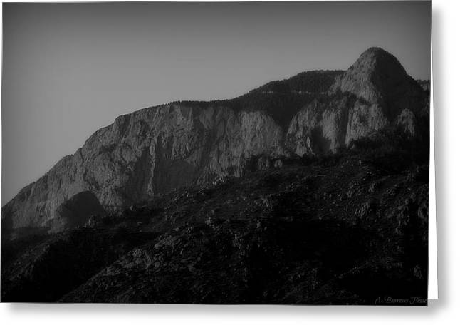 The Shield And Needle Black And White Greeting Card by Aaron Burrows