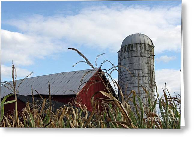 Greeting Card featuring the photograph The Silo by Denise Pohl