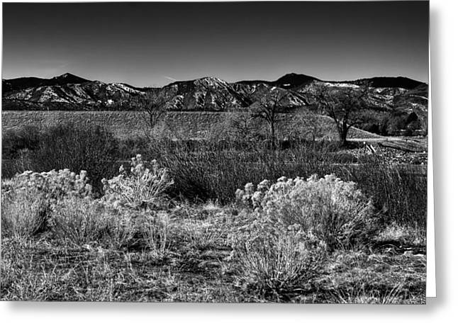 The South Platte Park Landscape II Greeting Card by David Patterson