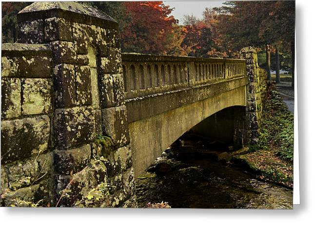 The Span Greeting Card by Larry Bishop