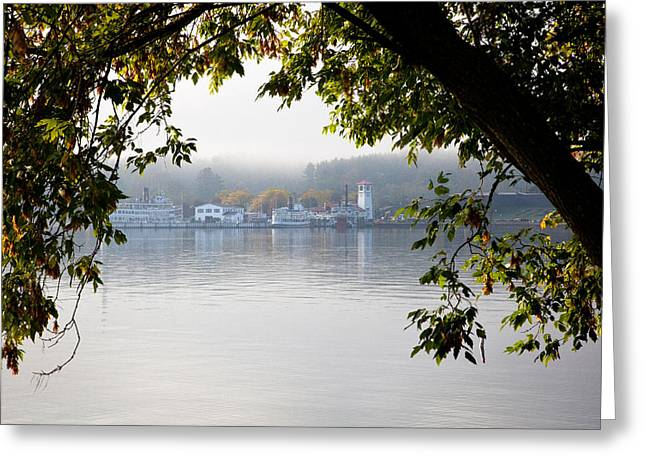 The Steamboats At Lake George New York Greeting Card by David Patterson