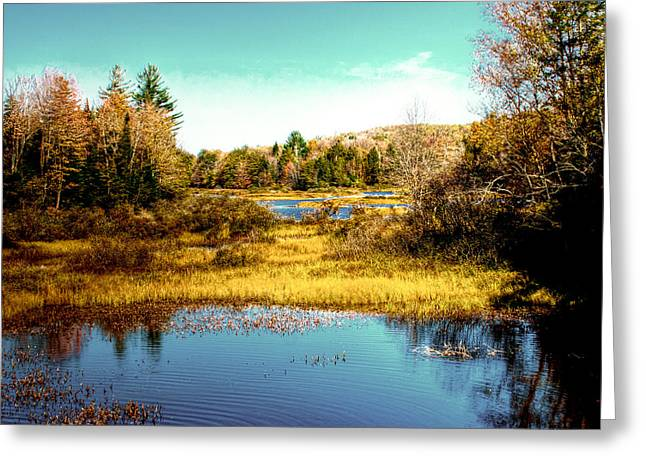 The Still Of Autumn In The Adirondacks Greeting Card