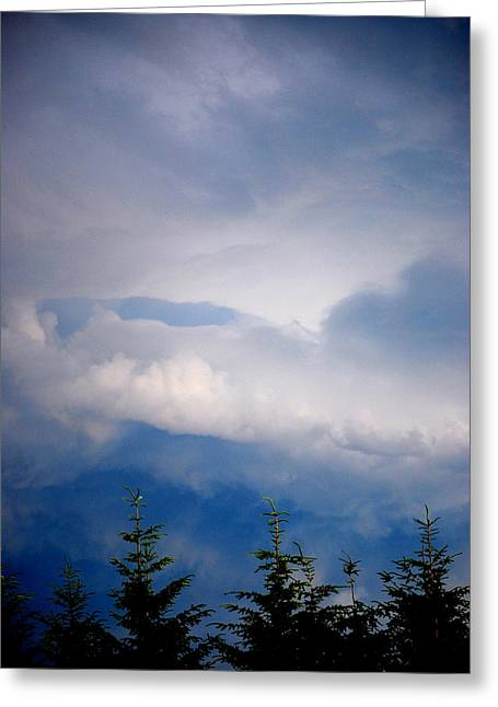 The Storms Brewing  Greeting Card