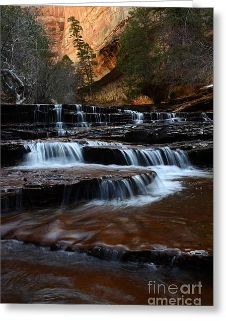 The Subway North Creek Greeting Card by Bob Christopher