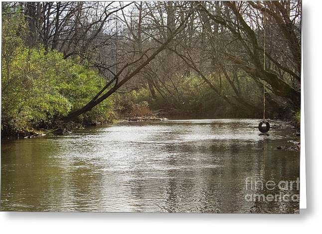 Greeting Card featuring the photograph The Swimming Hole by Michael Waters