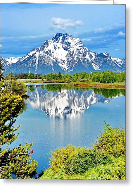 The Tetons From Oxbow Point Greeting Card by Richard Brady