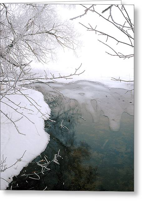 The Thaw Greeting Card