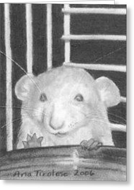 The Timid Rat - Aceo Greeting Card