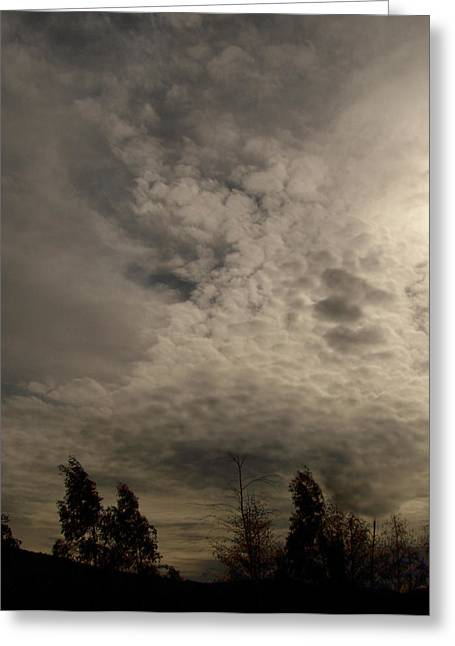 The Tree Cloud Greeting Card by Barbara Stirrup