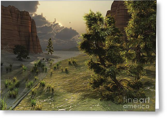 The Trees Are Kissed By Sunlight Greeting Card by Corey Ford