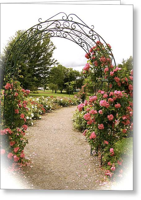 Greeting Card featuring the photograph The Trellis by Robin Regan