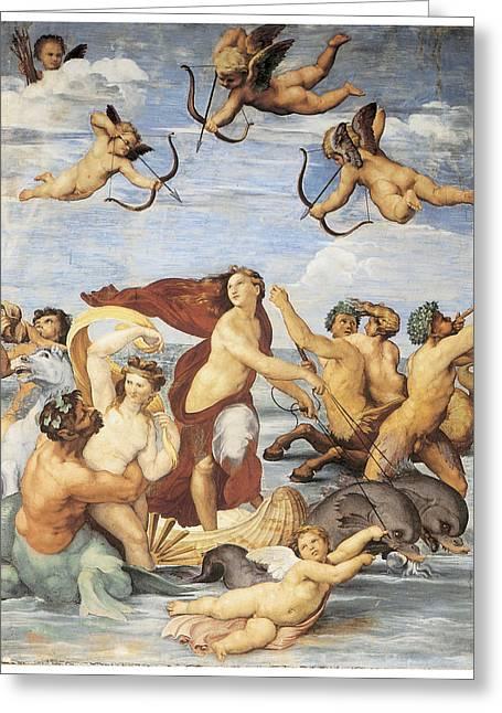 The Triumph Of Galatea Greeting Card by Raffaello Sanzio