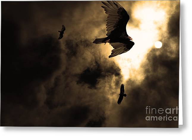 The Vultures Have Gathered In My Dreams . Version 2 . Golden Greeting Card by Wingsdomain Art and Photography