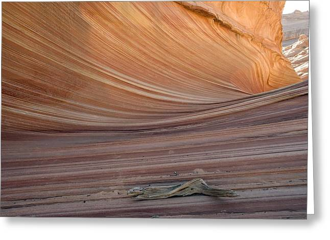 The Wave Rock Formation, Arizona, Usa Greeting Card by Bob Gibbons