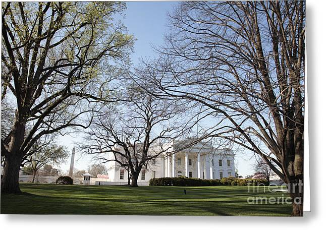 The White House And Lawns Greeting Card
