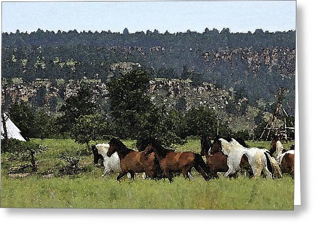 The Wild Mustangs In The Black Hills Greeting Card