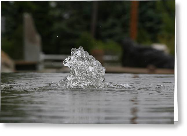 The Wonder Of Water Greeting Card by Paul SEQUENCE Ferguson             sequence dot net