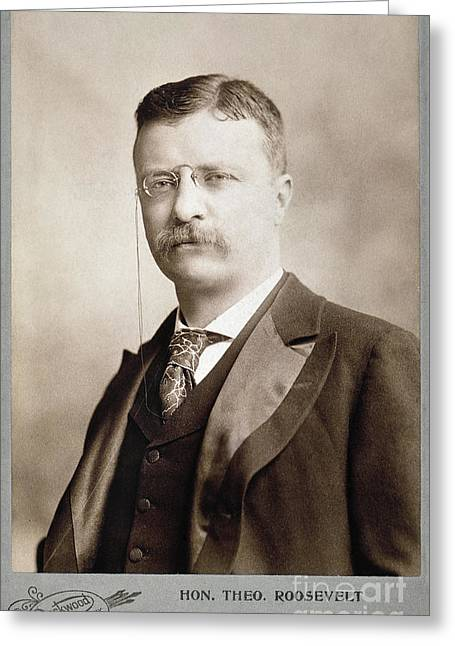 Thedore Roosevelt Greeting Card by Granger