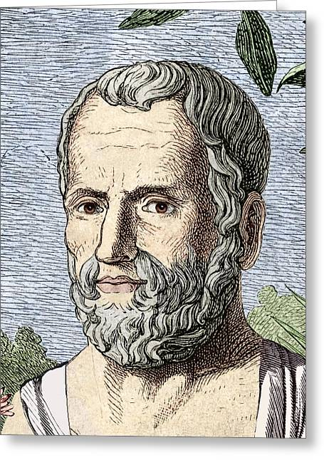 Theophrastus, Ancient Greek Philosopher Greeting Card by Sheila Terry