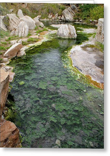 Greeting Card featuring the photograph Thermopolis Hot Springs by Geraldine Alexander