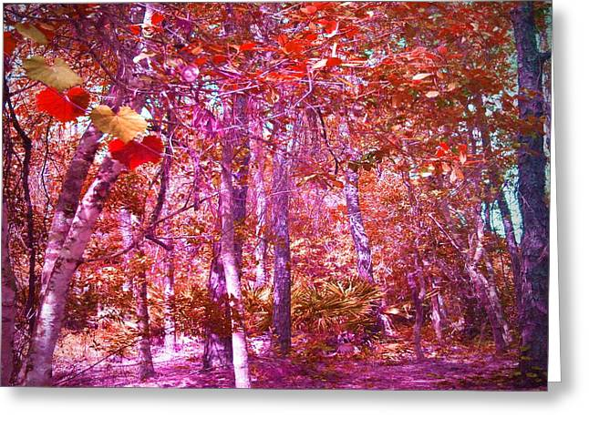 Greeting Card featuring the photograph Thicket In Color by George Pedro