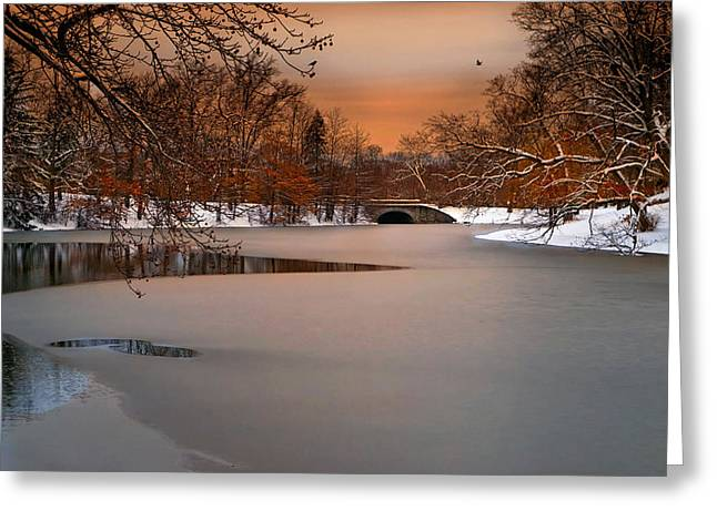 Thin Ice Greeting Card by Robin-Lee Vieira