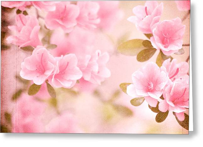 Think Spring Greeting Card by Kim Fearheiley