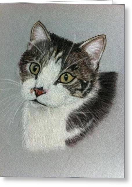 Thomas A Pastel Portrait Greeting Card by Hillary Rose