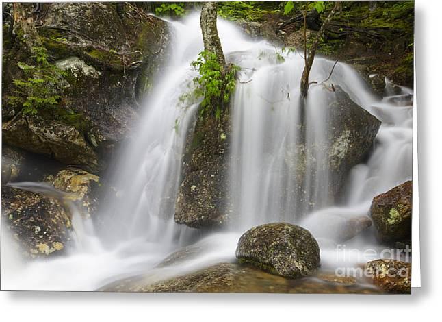 Thompson Falls - Pinkham Notch New Hampshire Usa Greeting Card by Erin Paul Donovan