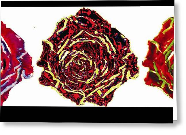 three colors of roses I Greeting Card