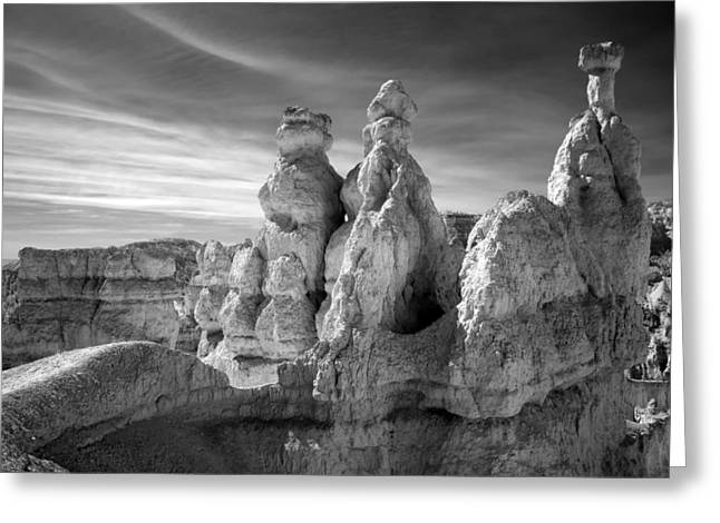 Greeting Card featuring the photograph Three Kings by Mike Irwin