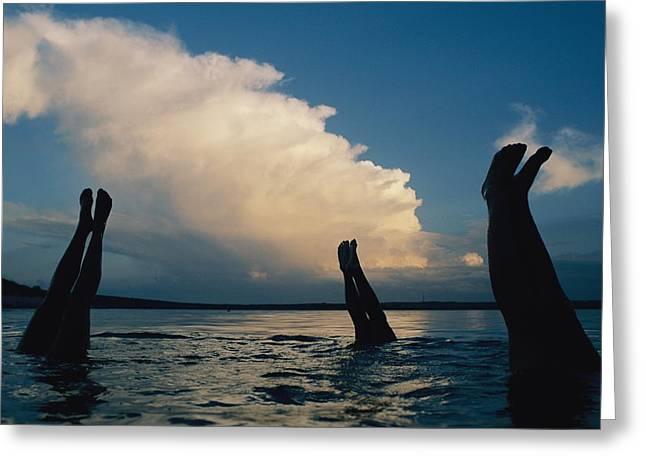 Three Pairs Of Legs Stick Greeting Card by Joel Sartore