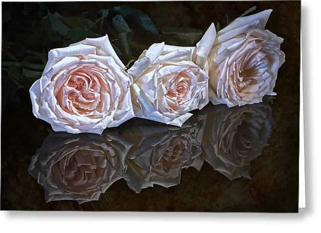 Three Roses Still Life Greeting Card by Tom Mc Nemar