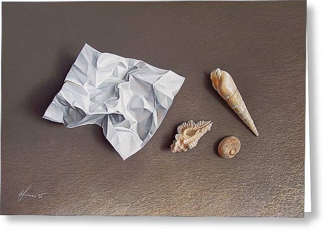 Three Shells For Collection Greeting Card by Elena Kolotusha