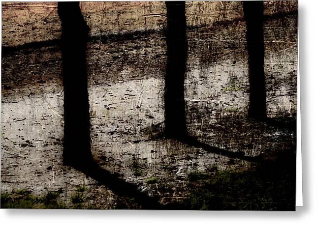 Three Tree Trunks Greeting Card by Carol Leigh