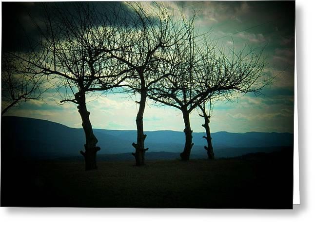 Three Trees Greeting Card by Joyce Kimble Smith