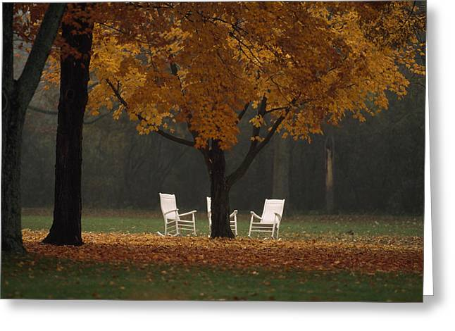 Three Welcoming Rocking Chairs Under An Greeting Card by Paul Chesley