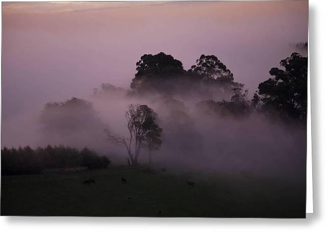 Through The Mist Greeting Card