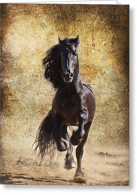 Thundering Stallion D6574 Greeting Card by Wes and Dotty Weber