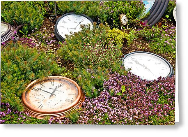 Thyme And Time Greeting Card by Chris Thaxter