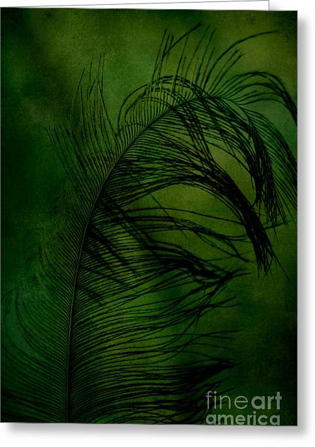 Greeting Card featuring the photograph Tickled Green by Robin Dickinson