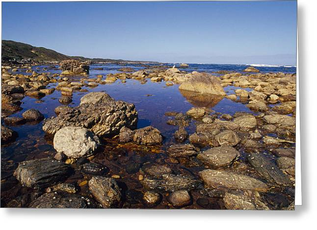Tidal Pools Fill The Rocky Foreshore Greeting Card by Jason Edwards