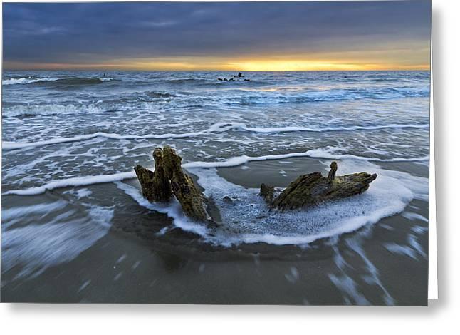 Tides At Driftwood Beach Greeting Card