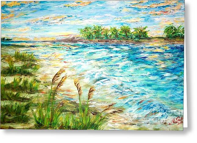Tides At Sunset Greeting Card by Mary Sedici
