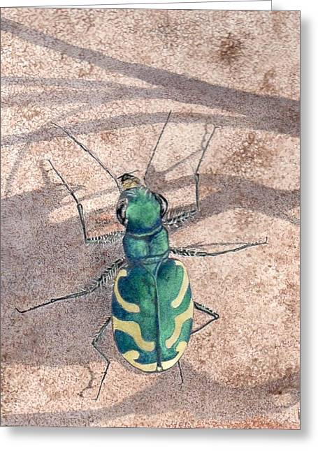 Tiger Beetle Greeting Card by Inger Hutton