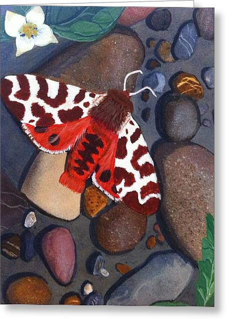 Tiger Moth On River Rocks Greeting Card by Amy Reisland-Speer