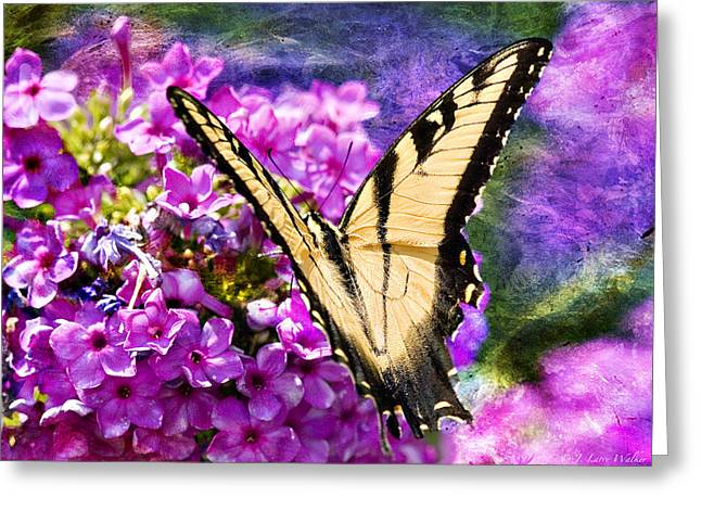 Tiger Swallowtail Morning Feed Greeting Card by J Larry Walker