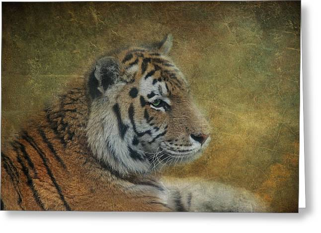 Tigerlily Greeting Card by Claudia Moeckel